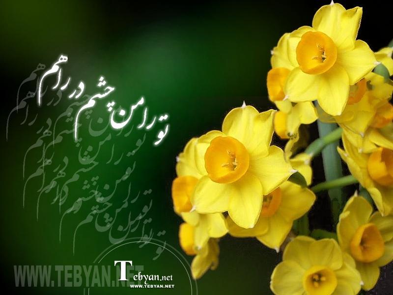 یا ابا الصالح المهدی (عج) چی بگم که همچی رو میدونی و میبینی پس خودت کمکمان کن خدایا خیلی دوست دارم خدایا شکرت خدایا منو ببخش یا صاحب الزمان (عج) شما هم منو ببخشید یا الله المدد ادرکنی